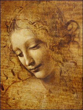 A beautiful drawing by Leonardo